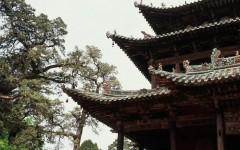 [行旅随拍]胶片摄影之运城关帝庙