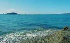 一些旧胶片,新西兰海边